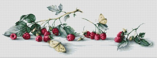 Raspberries with Butterflies
